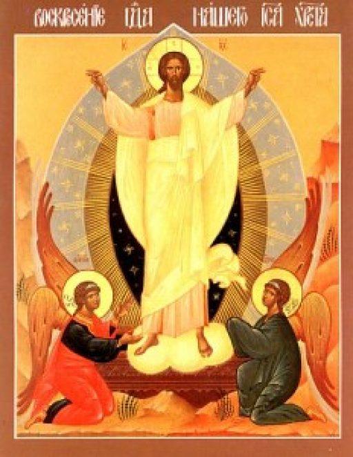Le Christ est ressuscité,  cherchez-le parmi les vivants