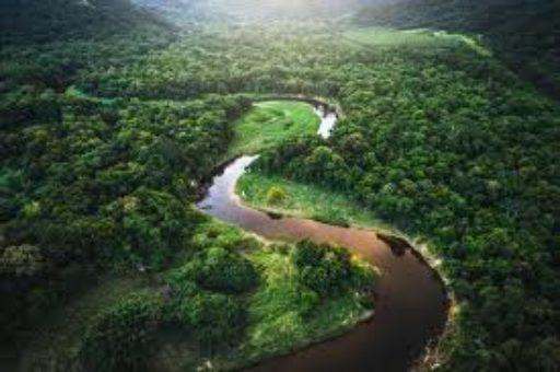 Le synode sur l'Amazonie …
